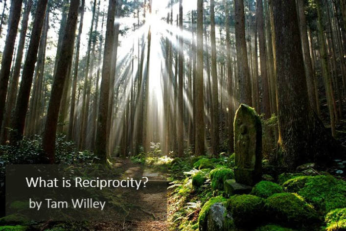 What is Reciprocity?